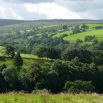 View to Greenbank