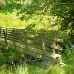 Footbridge below Lythe