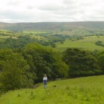 Bowland Fells from Helks Bank