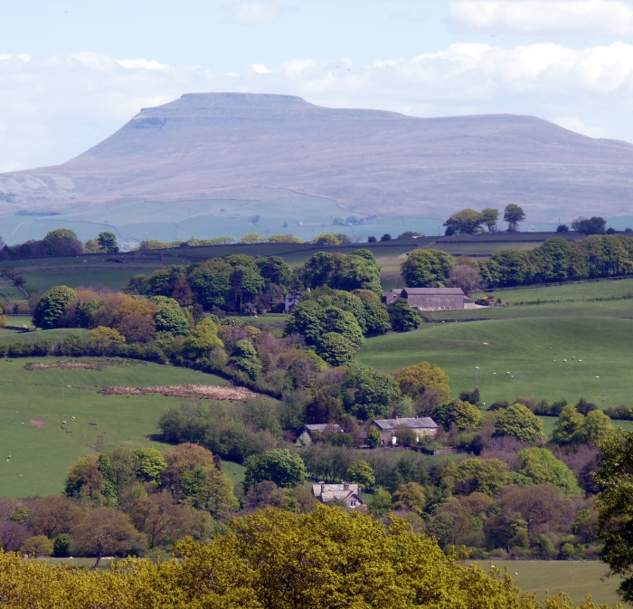 Helks Bank view. From top to bottom: Ingleborough, Barley Bank, Knott Hill, Low Wood (former vicarage)