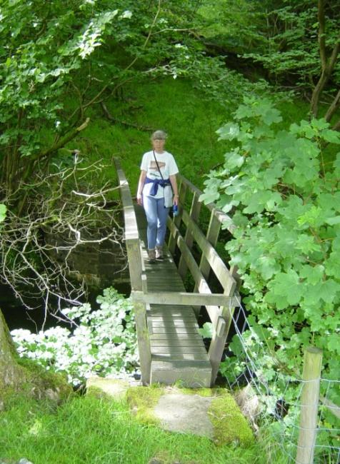 Footbridge near Lower Thrushgill