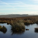 Bowland Knotts from Lythe Fell
